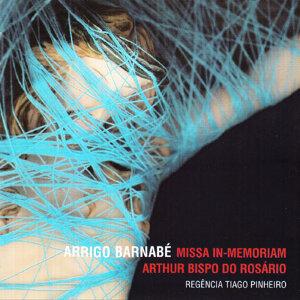 Arrigo Barnabé 歌手頭像