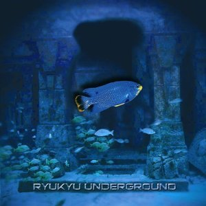 Ryukyu Underground 歌手頭像