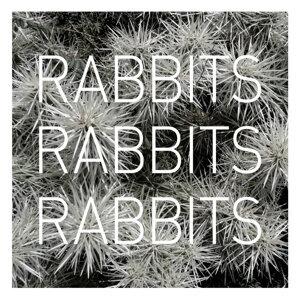 Rabbits Rabbits Rabbits 歌手頭像