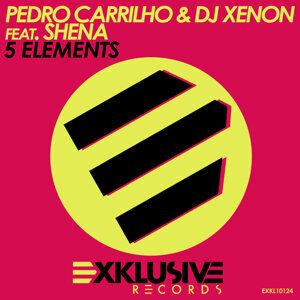 Pedro Carrilho & DJ Xenon feat. Shena 歌手頭像