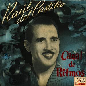 Raul Del Castillo Y Su Orquesta 歌手頭像
