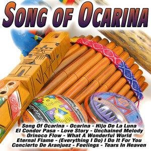Banda Andina De Ocarina 歌手頭像