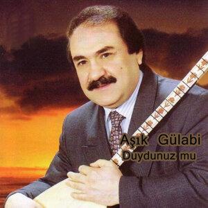 Aşık Gülabi 歌手頭像