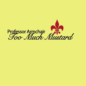 Professor Armchair 歌手頭像