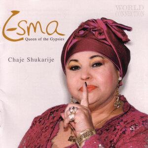 Esma Redzepova,  Stevo Teodosievski Ensemble 歌手頭像