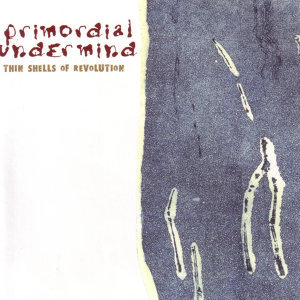 The Primordial Undermind