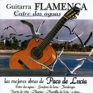 Guitarra Juan de la Herminia 歌手頭像