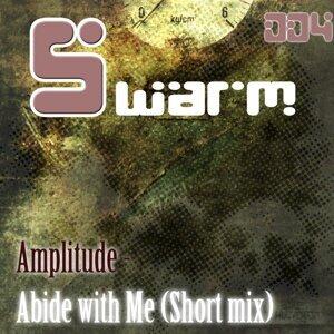 Amplitude 歌手頭像