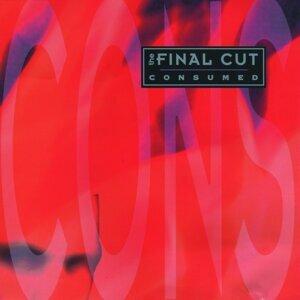The Final Cut 歌手頭像