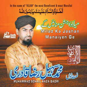 Muhammad Sohail Raza Qadri 歌手頭像