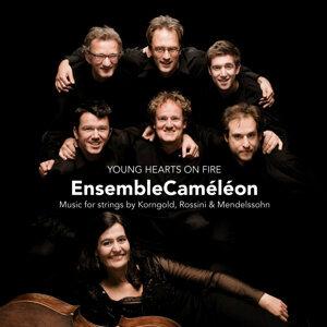 EnsembleCaméléon 歌手頭像
