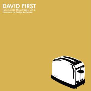 David First 歌手頭像