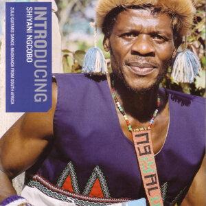 Shiyani Ngcobo 歌手頭像