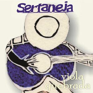 Viola Quebrada