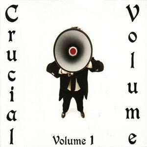 Crucial Volume