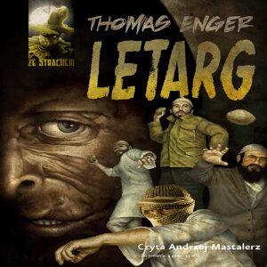 Thomas Enger 歌手頭像