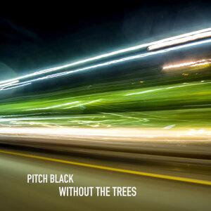 Pitch Black 歌手頭像