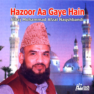 Alhaj Mohammad Afzal Naqshbandi 歌手頭像