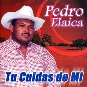 Pedro Elaica 歌手頭像