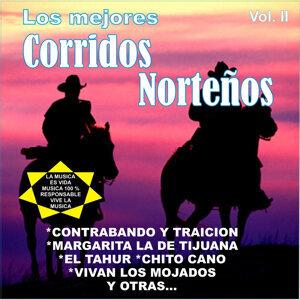 Los Idolos de Norte/Los Sobrinos del Tio 歌手頭像