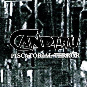 Candiru 歌手頭像