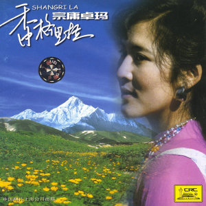 Zongyongzhuoma 歌手頭像