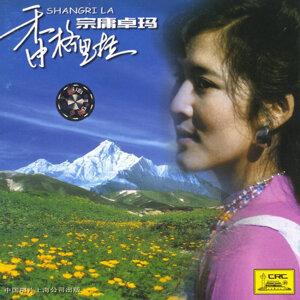 Zongyongzhuoma
