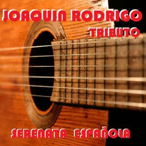 Guitarras Maravillosas 歌手頭像