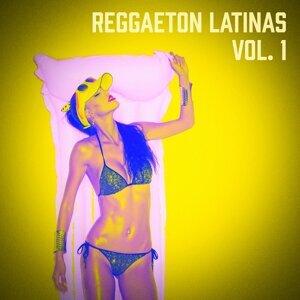 Reggaeton Hits Tribute 歌手頭像