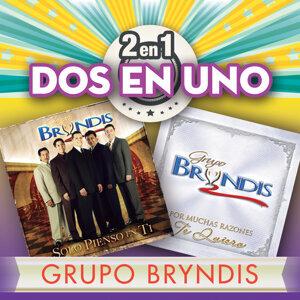 Grupo Bryndis 歌手頭像