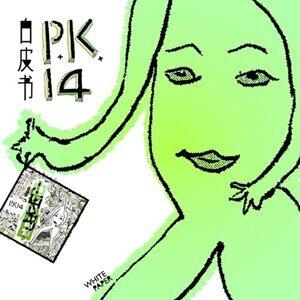 P.K.14 歌手頭像