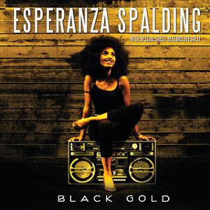 Esperanza Spalding 歌手頭像