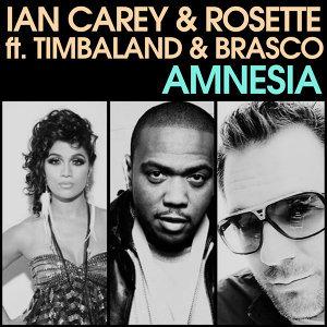 Ian Carey & Rosette feat. Timbaland & Brasco 歌手頭像