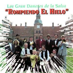 Los Gran Daneses de la Salsa 歌手頭像