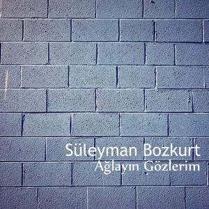 Süleyman Bozkurt 歌手頭像