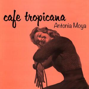 Antonio Moya & Orquesta Montilla 歌手頭像