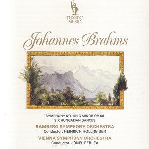 Bamberg Symphony Orchestra & Vienna Symphony Orchestra 歌手頭像