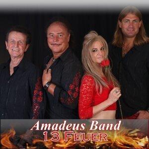 Amadeus Band 歌手頭像
