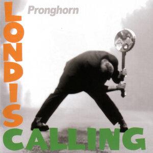 Pronghorn 歌手頭像