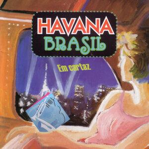 Havana Brasil 歌手頭像