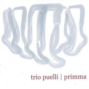 Trio Puelli 歌手頭像