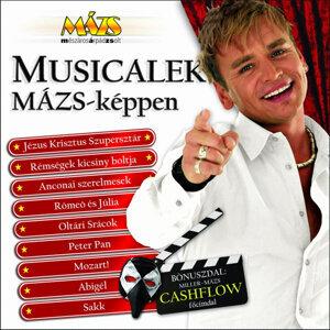Mészáros Árpád Zsolt 歌手頭像