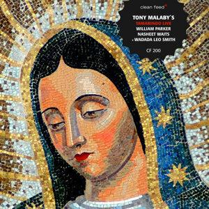 Tony Malaby's Tamarindo