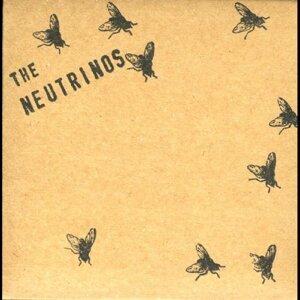 The Neutrinos