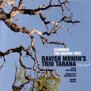 Ravish Momin's Trio Tarana