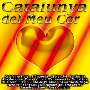 Cobla Catalana Els Castellers 歌手頭像