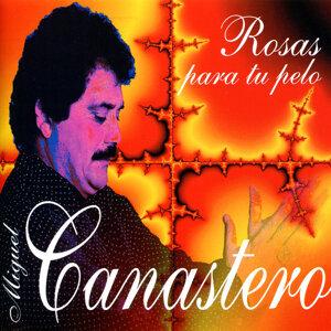 Miguel Canastero 歌手頭像