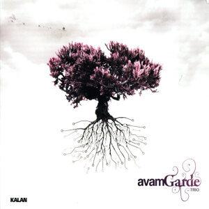 Avam Garde Trio 歌手頭像