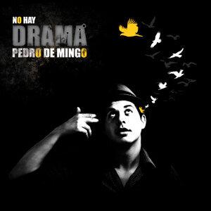 Pedro de Mingo 歌手頭像