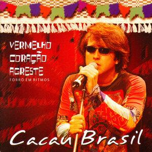 Cacau Brasil